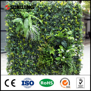 5-10 Years Warranty Outdoor Artificial Vertical Garden Wall pictures & photos