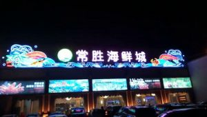 Outdoor LED Advertising Light Source pictures & photos