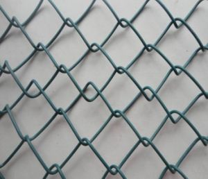 Chain Link Mesh Fence/Diamond Wire Mesh for Road pictures & photos