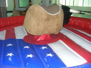 USA flag inflatable mat Mechanical Bull for Adults pictures & photos