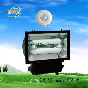 Intelligent Induction Lamp Flood Light pictures & photos