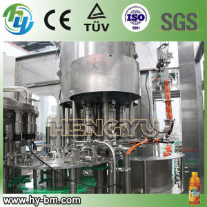 SGS Automatic Hot Filling Machine (RCGF) pictures & photos