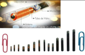 Mini RFID Microchip/Capsule Glass Tube Tag Needle for Cattle Tracking pictures & photos