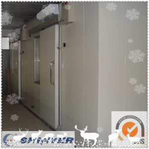 Shinyer Cool Room/Walk in Freezer pictures & photos
