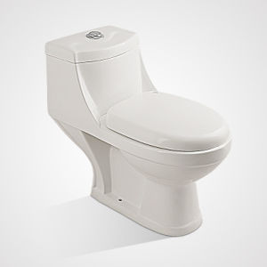 Hot Sale Porcelain Water Saving Washdown One Piece Toilet