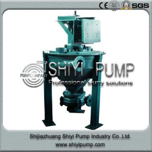 Heavy Duty Handling Oil Sand Froth Pump pictures & photos