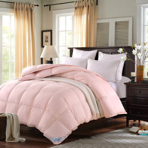 High Quality Home Bed Comforter Comforter Silk Quilt pictures & photos