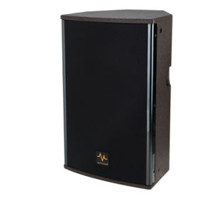 "RC-10+ 10"" Two Way Passive System Professional Audio Loudspeaker pictures & photos"