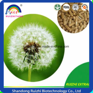 Certificate Manufacturer Supply Dandelion Root Extract Powder pictures & photos