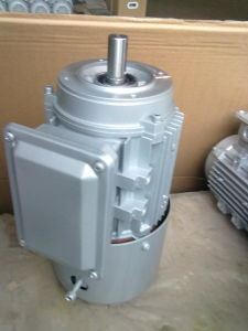 Brake Motor - Cast Iron - Standard Efficiency - Ie3 pictures & photos