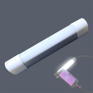 External Battery Phone Power Bank LED with Rechargeable LED Light pictures & photos
