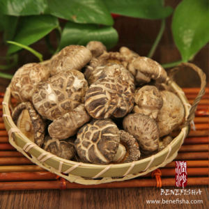 Dried Shiitake Mushroom Without Stem (White Flower) pictures & photos
