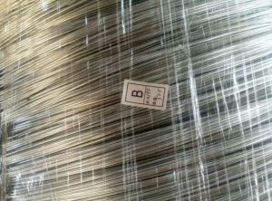 Hot Dipped Galvanized Wire for Woven Mesh and Fencing pictures & photos