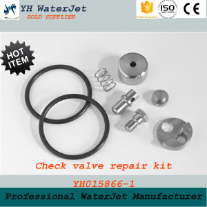 Check Valve Repair Kit Waterjet Cutting pictures & photos