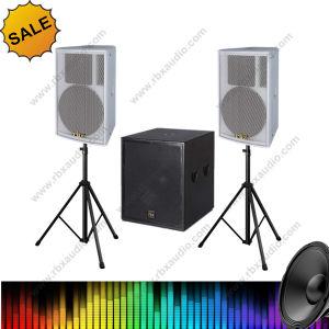 Aq-12 Outdoor and Indoor 300W 2-Way Mobile Speaker