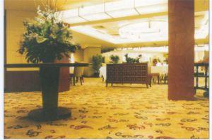 Wall-to-Wall Corridor Jacquard Wilton Carpet