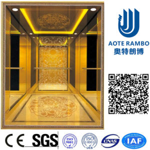 German Professional Passenger Elevator with Gearless Traction (RLS-226) pictures & photos