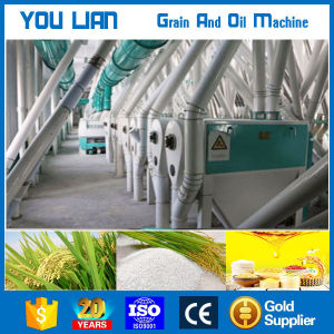 High Efficiency Commercial Home Use Price Mini Rice Mill pictures & photos