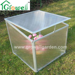 Cold Frame Mini Greenhouse for Young Plants Growing (F222) pictures & photos