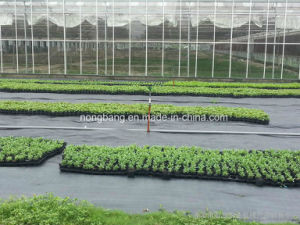 Heavy Duty Black Ground Cover pictures & photos