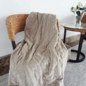 Rapid Heat up Heated Throw Blanket with Over Heat Protection pictures & photos
