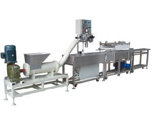 New Automatic Putty Filling Machine pictures & photos