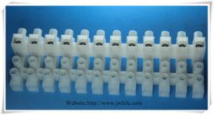 Polypropylene Terminal Block with Zin Plated pictures & photos