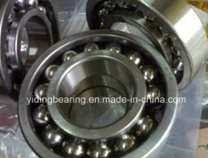 Full Complement Deep Groove Ball Bearing Bl311 Bl312 Bl313 Without Bearing Cage pictures & photos