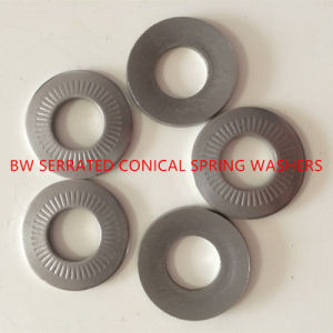 NFE25-511 Serrated Conical Spring Washer pictures & photos