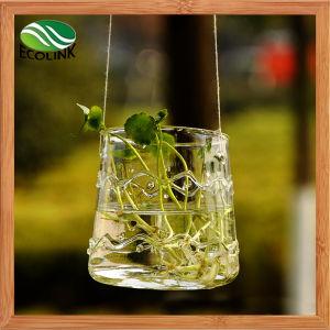 Hanging Glass Flower Vase Glass Terrarium Ornament pictures & photos