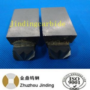 Carbide Dies for Nails Making Hot Selling in China pictures & photos