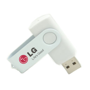 Common Plastic USB Flash Disk with 2GB Capacity pictures & photos