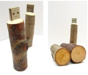 Custom Original Wood Twig USB Flash
