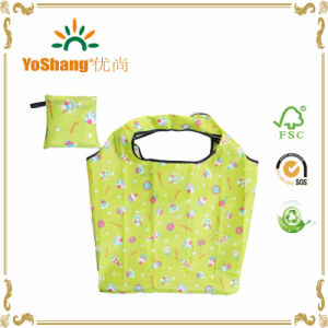 Nylon Foldable Reusable Shopping Bag, Polyester Pattern Folding Bag, Printed Folding Bag pictures & photos