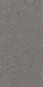 Gray Color Galaxy Gray Quartz Countertop pictures & photos