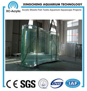Transparent Large UV Marine Acrylic Fish Tank for Aquarium or Oceanarium pictures & photos