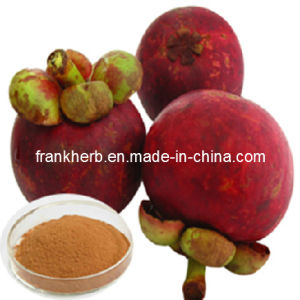 Anti-Oxidant: 90% Mangosteen Extract pictures & photos