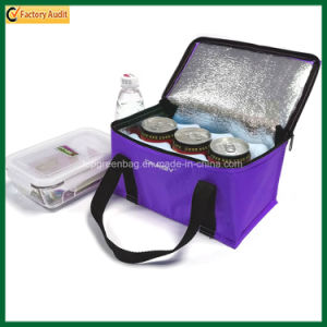 Promotional Polyester Insulated Cans Cooler Carry Bag for Frozen Food pictures & photos