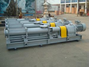 G70 Mono Screw Slurry Pump pictures & photos