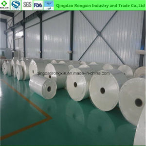Double Sides PE Coated Salt Sachet Packaging Paper pictures & photos