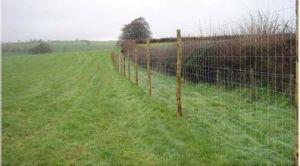 ISO9001 Certified Hot Sale High Quality Cheap Galvanized Field Fence, Cattle Fence, Farm Fence pictures & photos