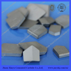 Tungsten Carbide Tips for Coal Mining Tools and Making Rotary Drill Bits pictures & photos