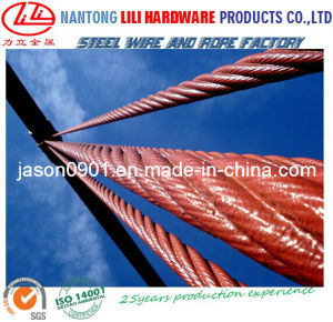 Steel Rope (factory) pictures & photos