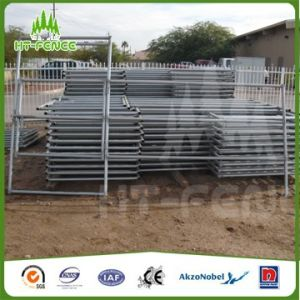 Paint Silver Anti-Rust Cattle Yard pictures & photos