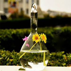 Hand Blown Transparent Flower Glass Vase/Crystal Vase pictures & photos