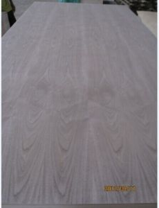 AAA Grade Black Walnut Fancy Door Skin Plywood 3′x7′ pictures & photos