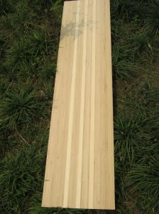 Bamboo Veneer Stringer Style for Longboards pictures & photos