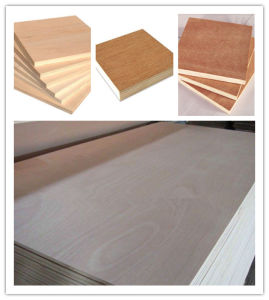 Hot! ! ! ! Okoume Plywood/Bintangor Plywood/Commercial Plywood pictures & photos