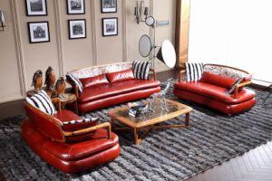 Modern-Leather-Sofas-2013- ...