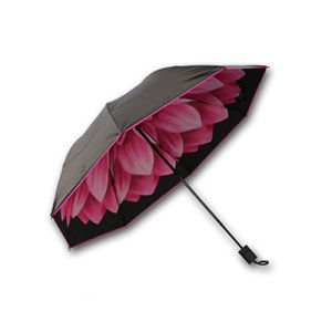 Ladies Sun Umbrella pictures & photos